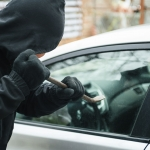 Types of Theft in California